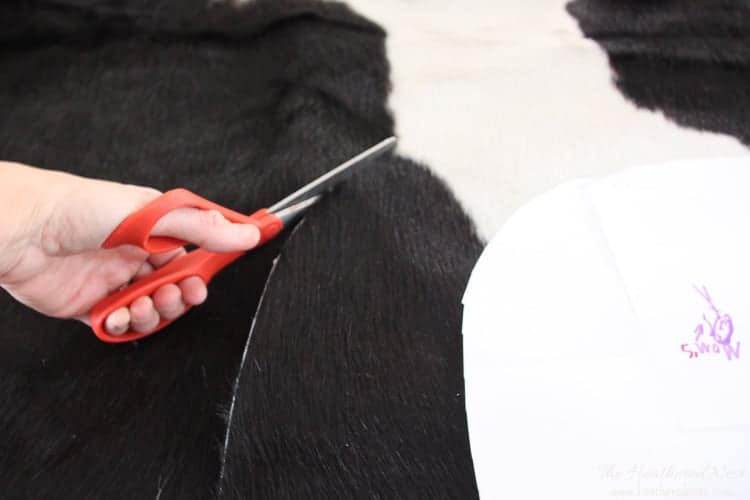Cutting IKEA cowhide rug for DIY chair upholstery project using scissors