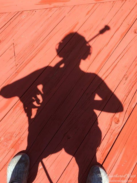 DIY deck cleaning, what you'll need, and all the important tips and tricks.