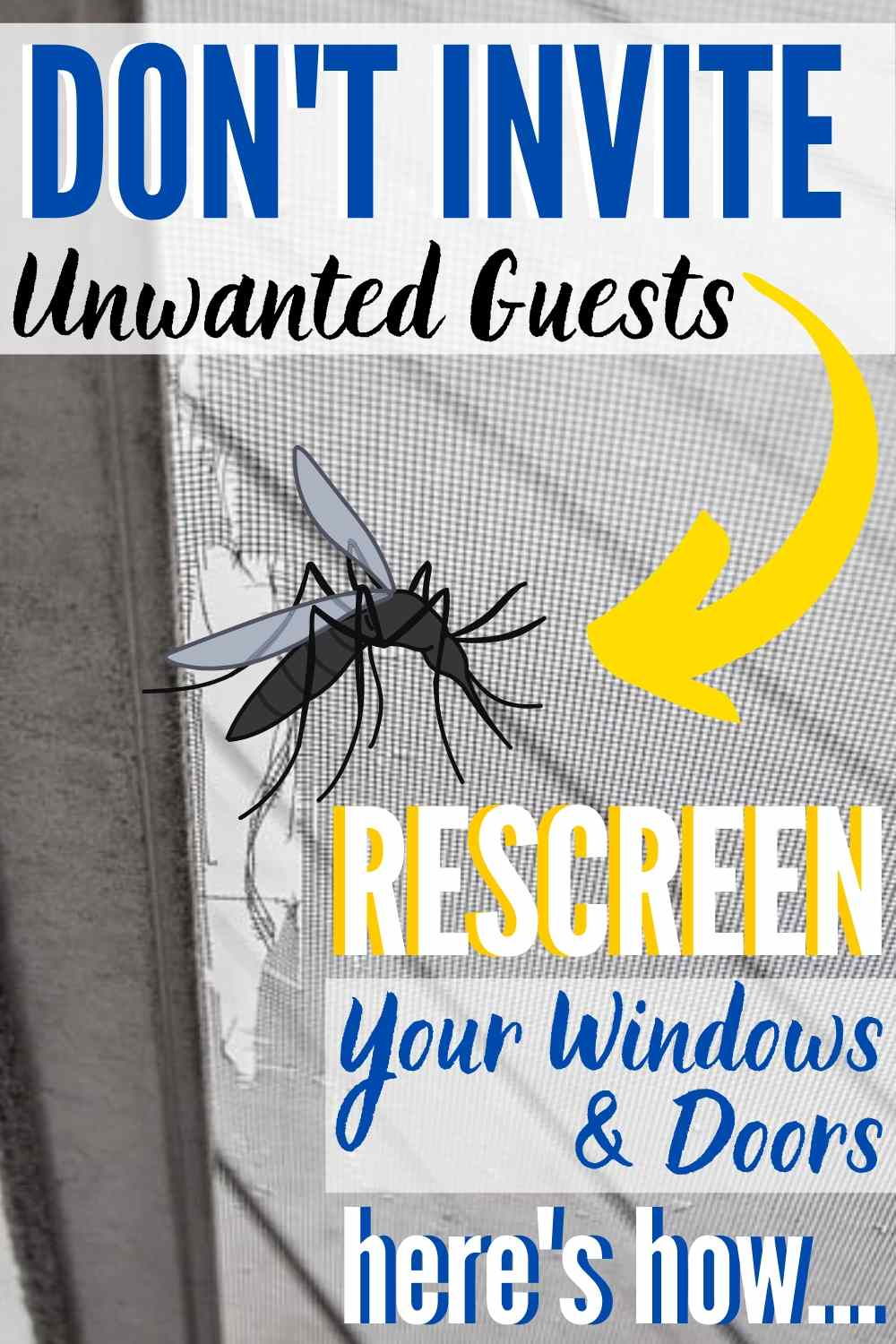 DIY window & door rescreening is a simple way to save money! This easy DIY project takes less than 30 minutes per window. Here's how!