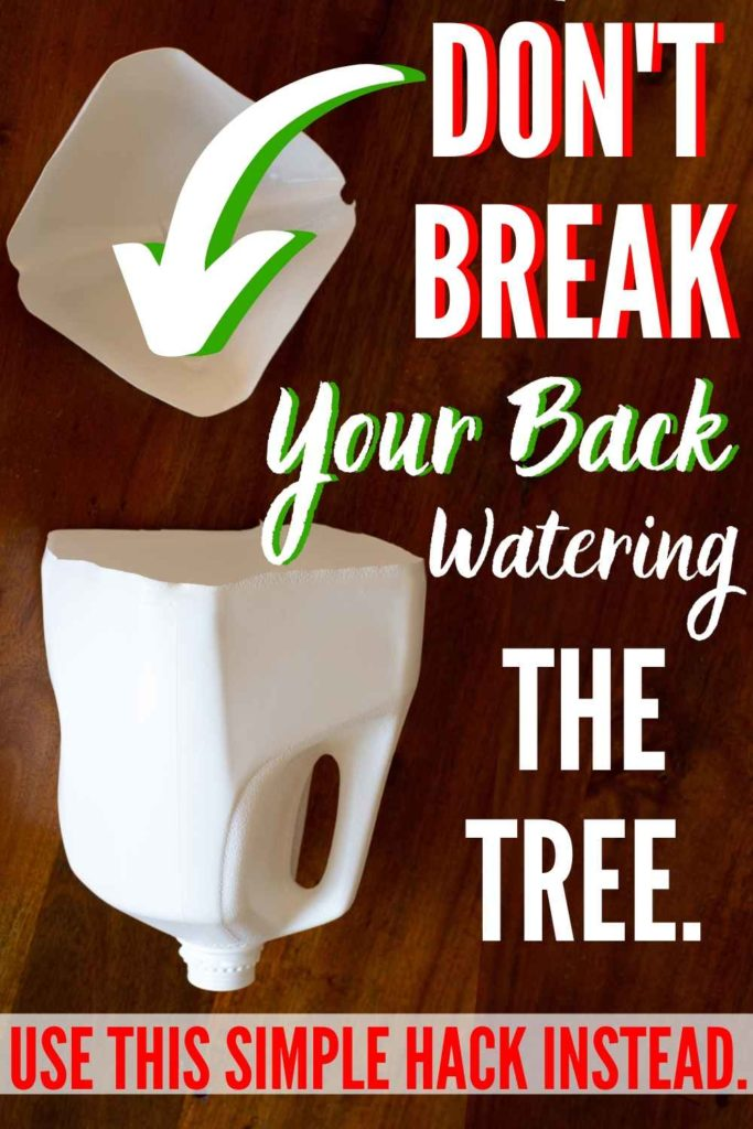 WHY DIDN'T I THINK OF THIS?! Easy DIY tool prevents breaking your back to water the Christmas tree! Best holiday DIY ever!! from heatherednest.com #christmashack #christmastreetool #wateringtool #treewateringtool #christmastreehack #homehack