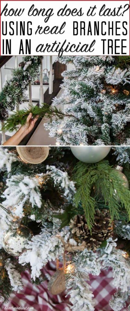 How long will this popular DIY Christmas tree last?? I can't believe how well this works, and what a beautiful result they got from this DIY Christmas tree hack! DEFINITELY trying this next holiday season!!
