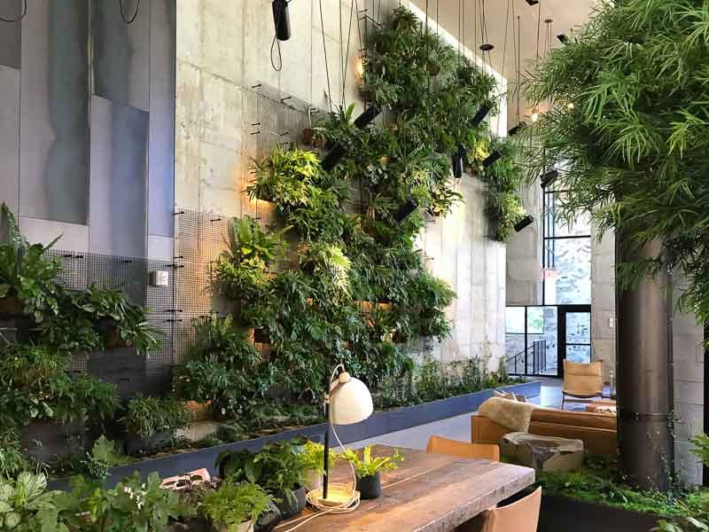 Interior multi-story green wall at 1 Hotel Brooklyn Bridge