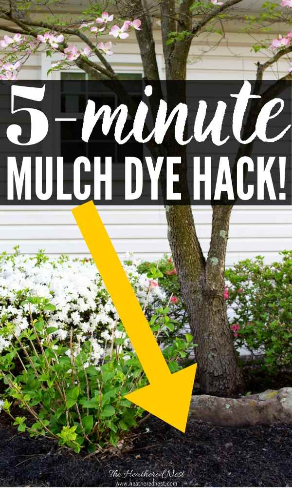 Ever heard of mulch dye, or mulch paint? YES, it's a thing! Here's our review and why you'll want to try this DIY gardening idea this spring!