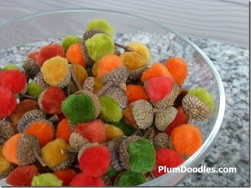 pom pom acorns
