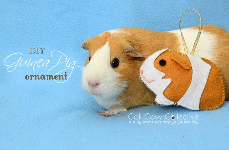 guinea pig felt Christmas ornaments