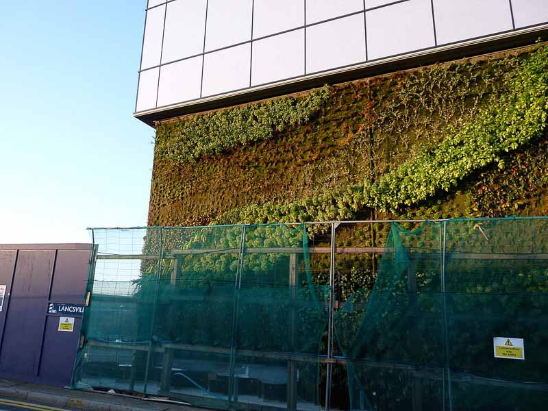 Green (Living) Wall at Leamouth North, Bow Creek, London, UK - Gordon Joly