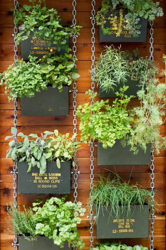 Stunning vertical garden created with old drab olive ammunition canisters and hung with chain along the side of a wood shed or home.