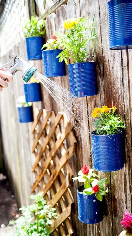 Upcycled tin cans painted blue and attached to a garden fence to create a vertical garden, this one with annuals