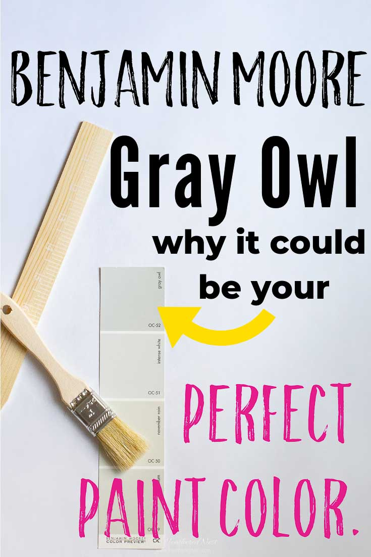 Is Benjamin Moore Gray Owl the perfect gray paint for your home? Compare Gray Owl to other popular greys, & see 30 real homes that show off the color in different lighting situations & spaces, interior & exterior. Explore the undertones & more! #GrayOwl #BenjaminMoore #graypaint #greypaint #BenjaminMooreGrayOwl #graypaintcolors #graypaintbedroom #graypaintlivingroom #graypaintdiningroom #graypaintbasement #graypaintbathroom #graypaintcolorspopular #bestgraypaint #bestgreypaint