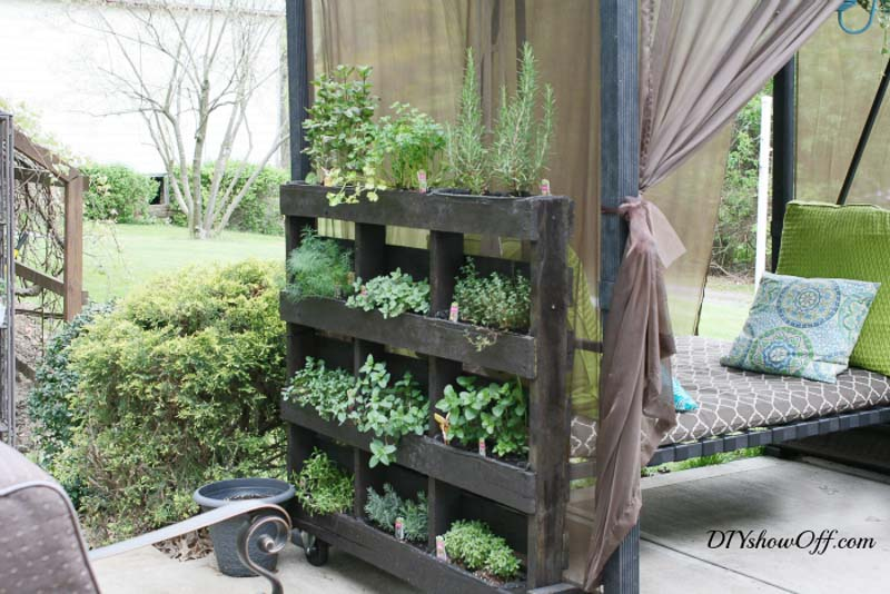 A rolling DIY pallet vertical planter full of herbs