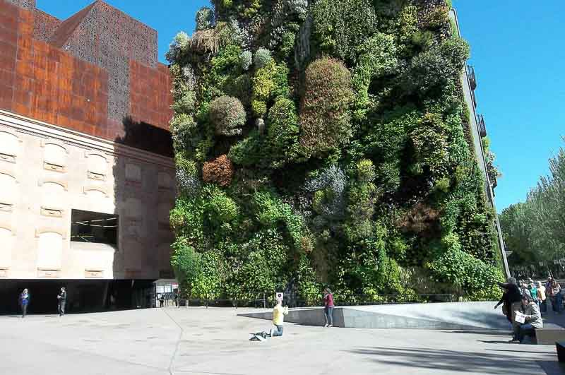 Green wall at Caixa Forum, Paseo del Prado, Madrid - Mike Dixon Design