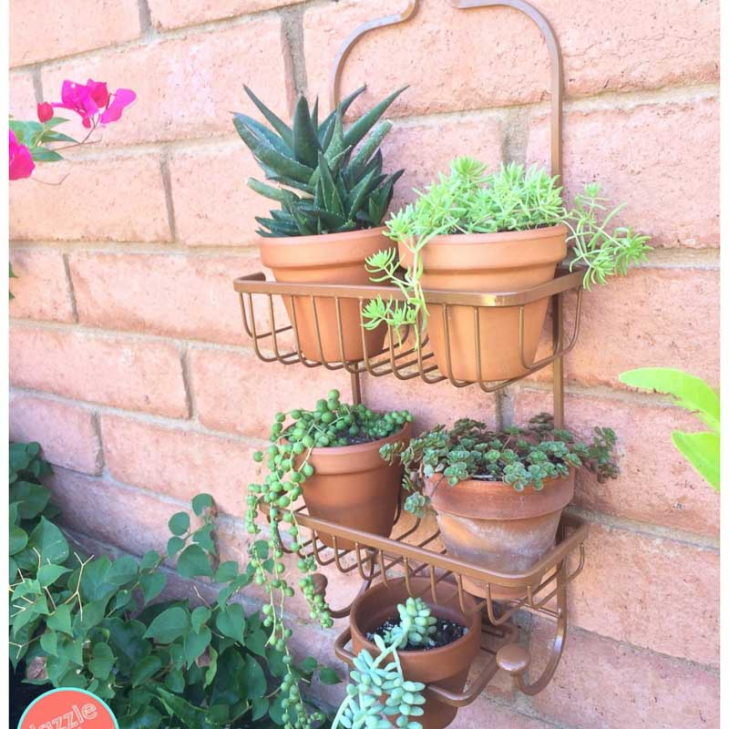 Repurposed shower caddy becomes a vertical succulent planter on the exterior of a home
