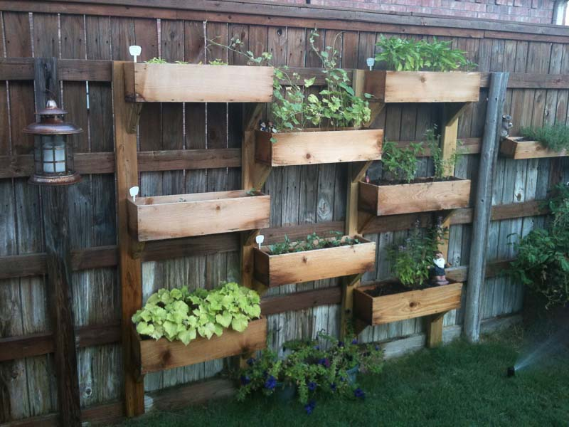 A wood vertical garden attached to a fence with large wood trough-style planting boxes
