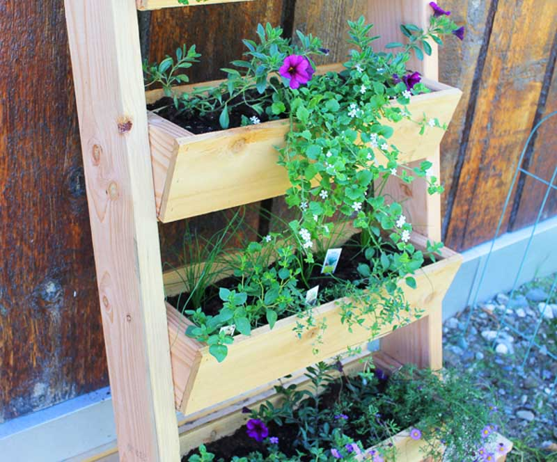 DIY trough style vertical garden that is constructed to lean against a vertical surface
