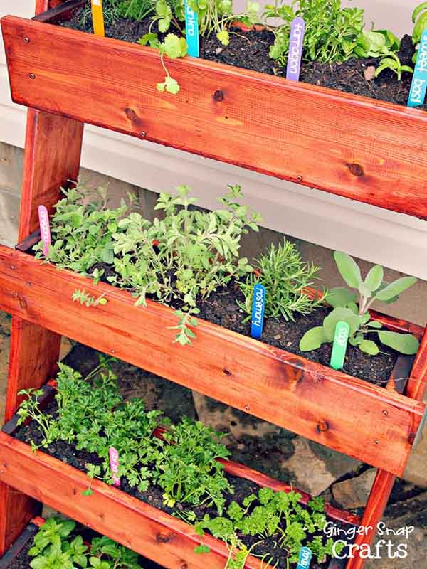 Leaning style ladder vertical planter DIY. This one with herbs and colorful popsicle type garden markers