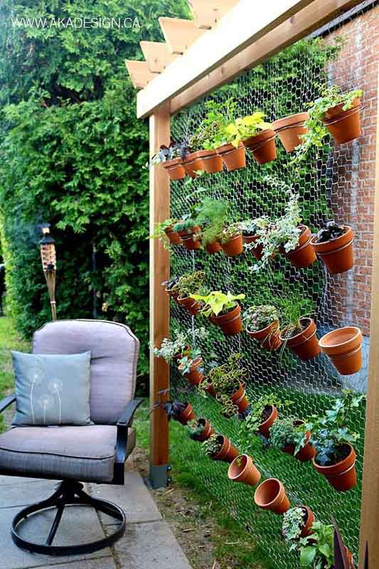 Vertical garden from a free-standing wood frame plus chicken wire/fencing mesh with terra cotta pots attached