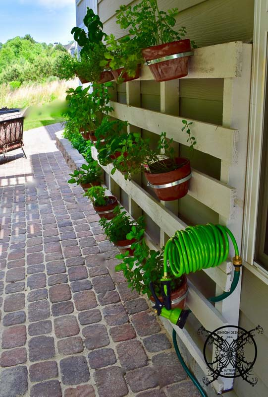 pallet upcycled into a vertical garden situated alongside a home on the exterior. Terra cotta pots attached to the pallet wood.