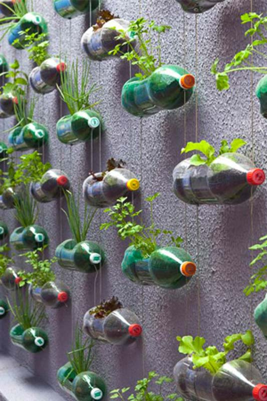 Gorgeous green wall created by hanging plastic soda bottles horizontally and stacked vertically with wire