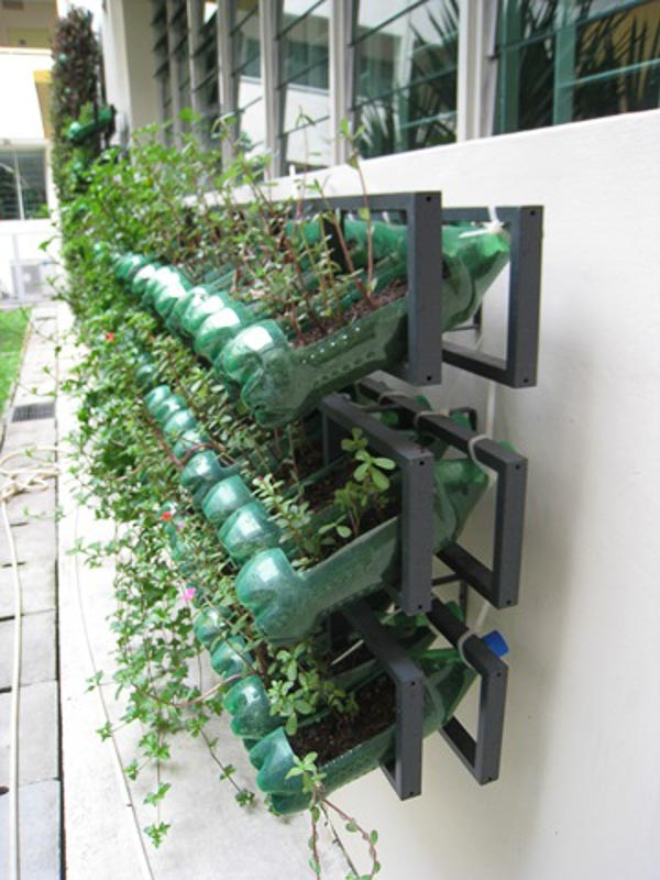 Old plastic CD racks upcycled along with plastic soda bottles to create a vertical garden attached to the exterior of a building