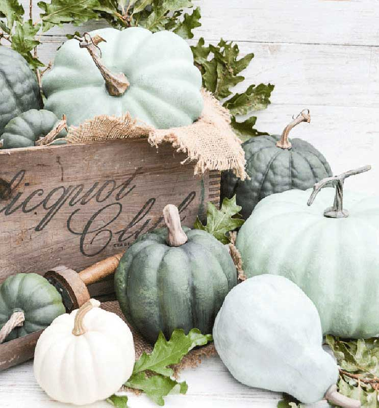 51 Cute Painted Pumpkin Ideas - Anderson and Grant Chalk Paint Brushed Pumpkins