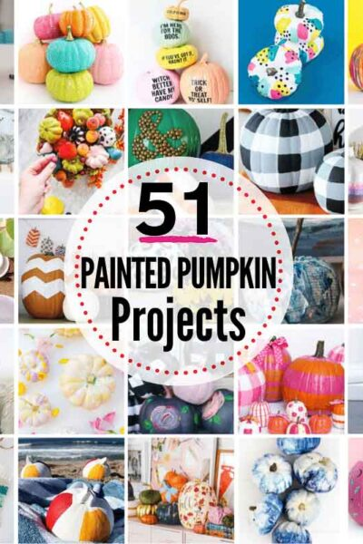 50+ CUTE Painted Pumpkins To Try This Fall!