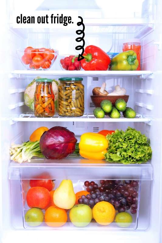 19 Things To Do At Home Before You Travel Checklist - image of refrigerator full of fresh produce
