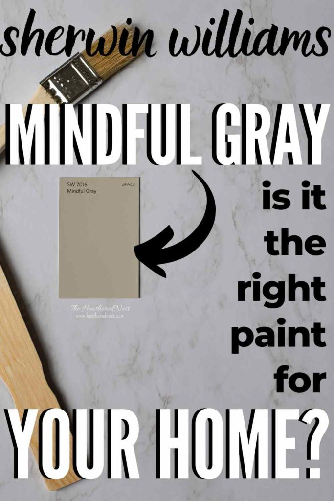 a swatch of Mindful Gray next to a stir stick
