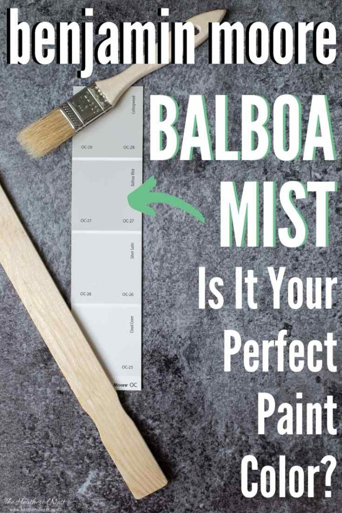 Swatch of Benjamin Moore Balboa Mist with other warm grays
