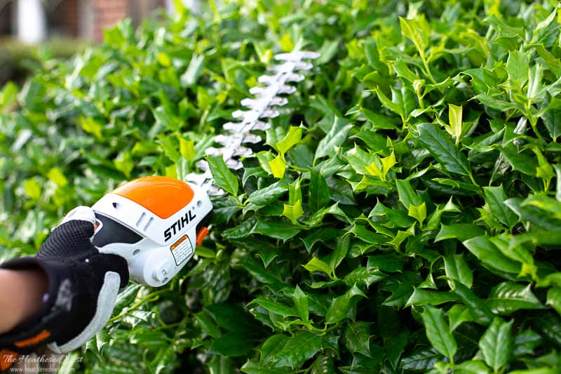 STIHL HSA-25 battery powered pruning tool with longer hedge shear blade attached and in use