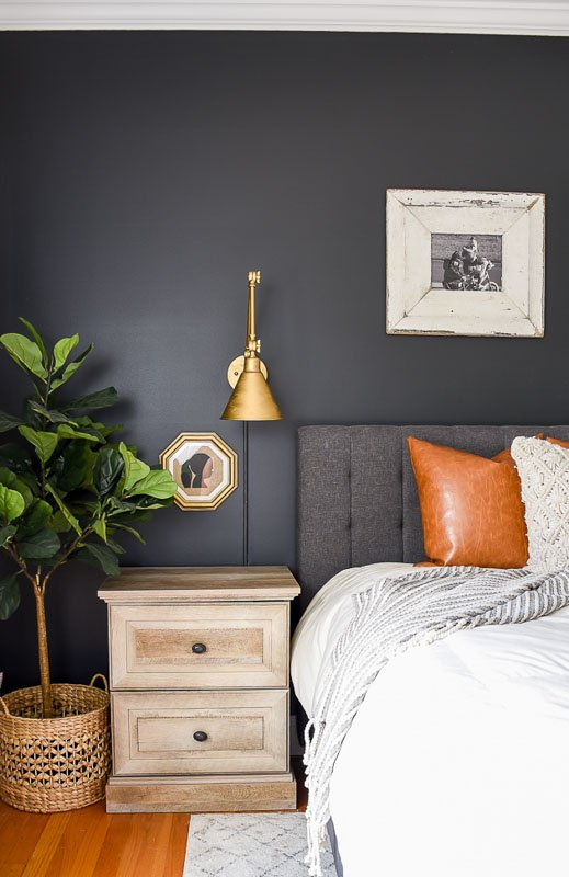 Bedroom with Sherwin Williams Iron Ore on the walls, with a plant and gold light sconce.