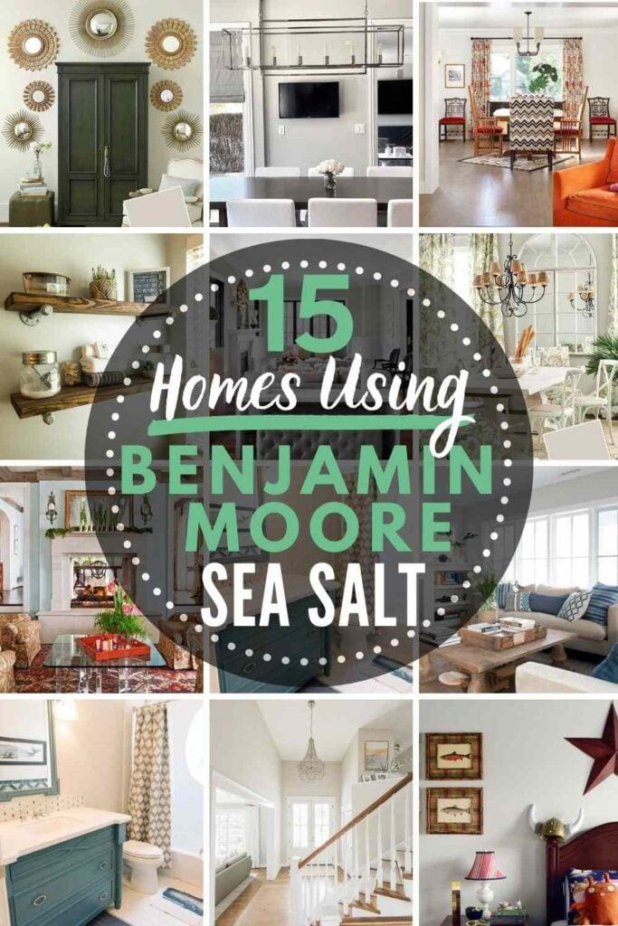 grid with 12 homes painted in Benjamin Moore Sea Salt