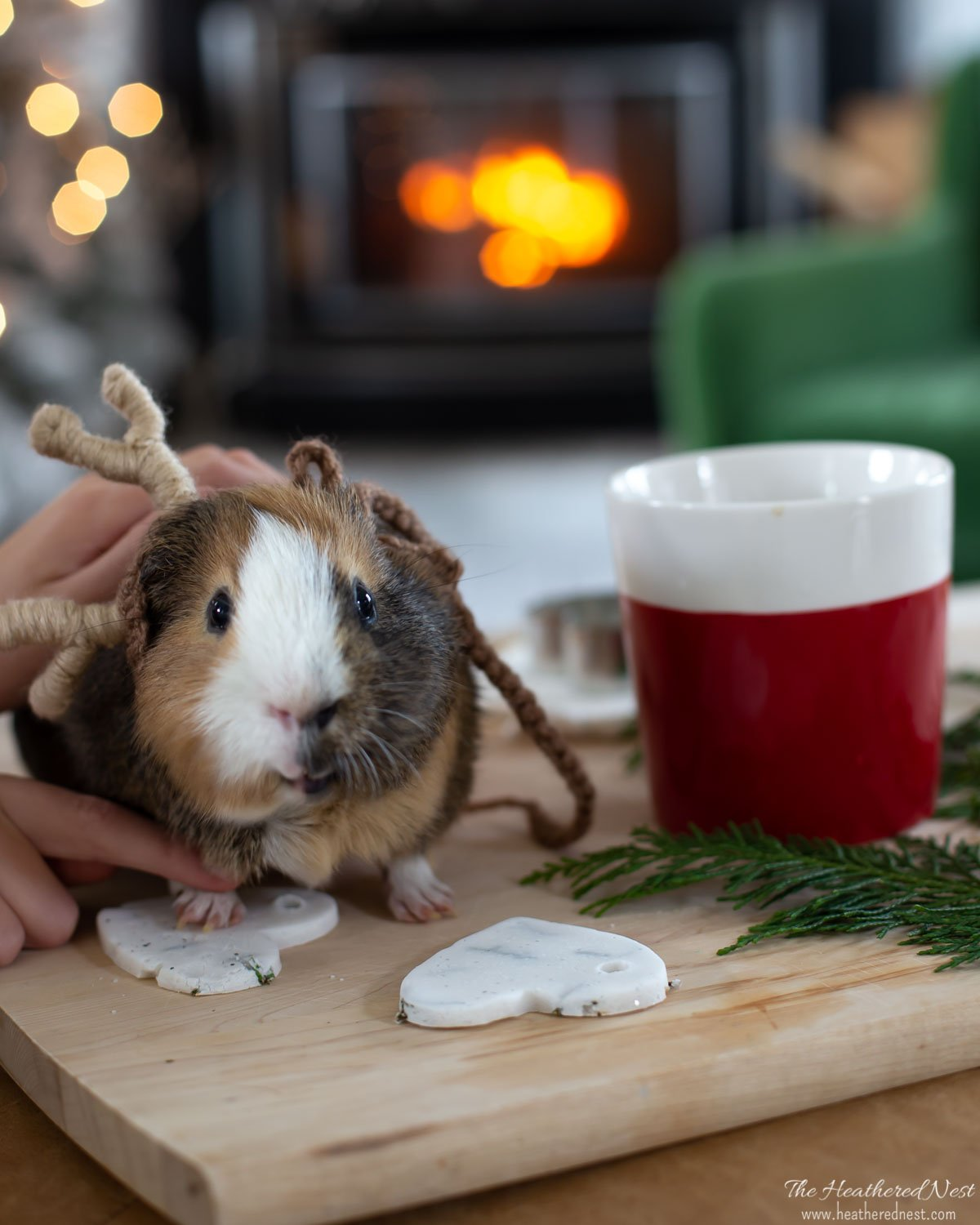 guinea pig making a paw-print salt dough ornament seen on a wood cutting board with cup of coffee close-by, fireplace in background. Guinea pig wearing reindeer costume.